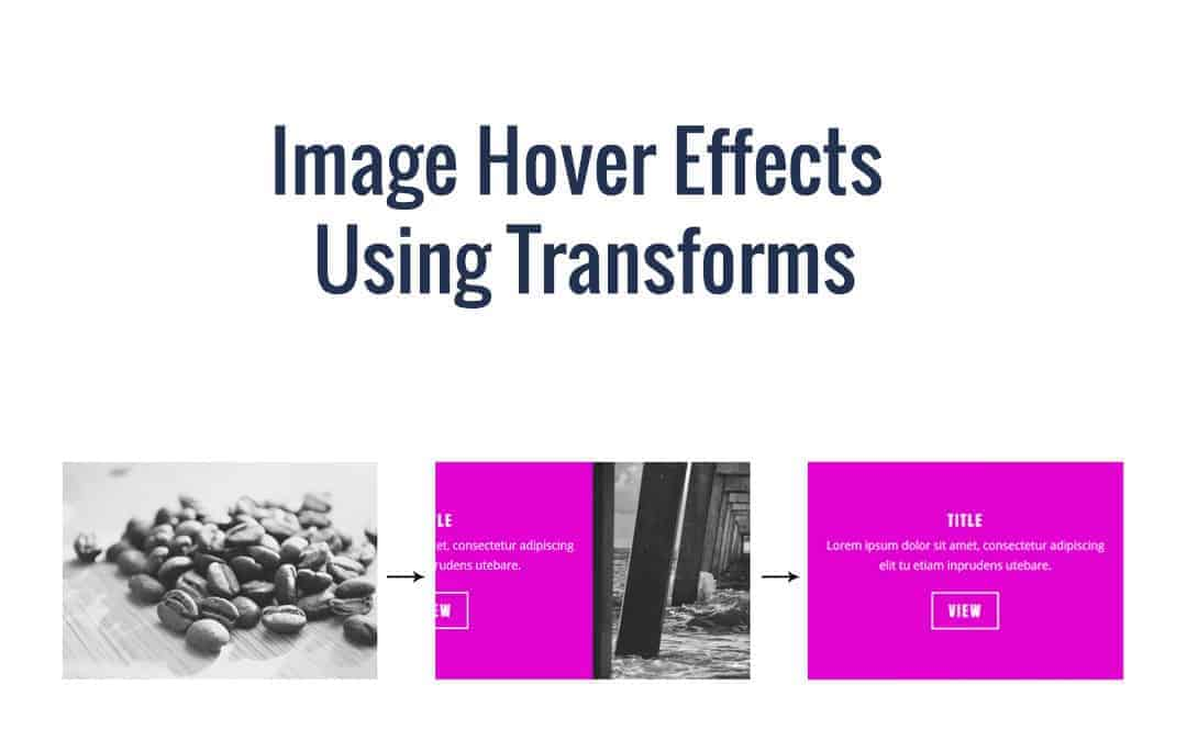 Week 61: Image Hover Effects Using Transforms