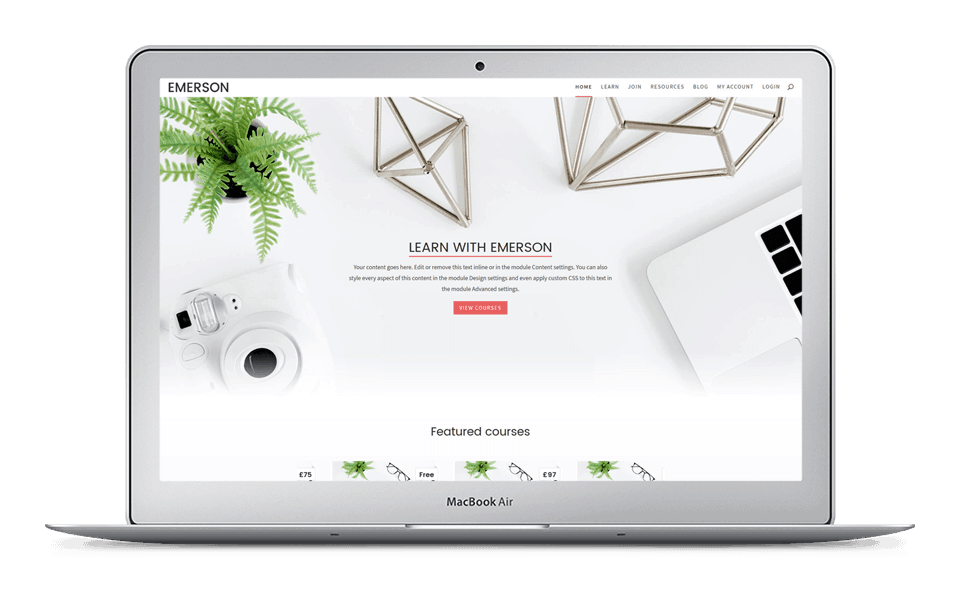 30% Off Emerson Divi Child Theme