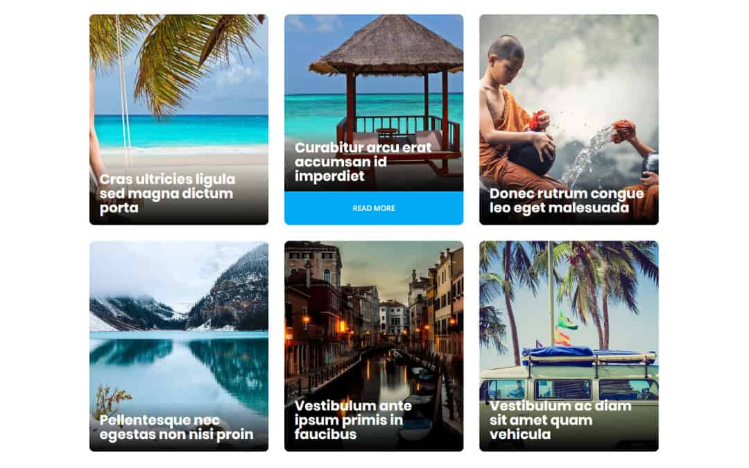 Week 137: Multi-Hover Effect Blog Grid